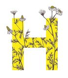 Yellow letter H with camomile flowers. Floral letter design with hand-drawn camomile flowers Stock Photo