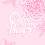 Floral lettering. The phrase Come up roses. Ink hand lettering on a background with the image of a pink rose flower. Vector floral illustration. Designed for Royalty Free Stock Photography