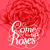 Floral lettering. The phrase Come up roses. Ink hand lettering on a background with the image of a red rose flower. Vector floral illustration. Designed for Royalty Free Stock Photos