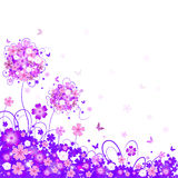 Floral lilac background Stock Photography