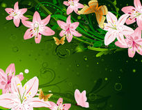 Floral lily Stock Images