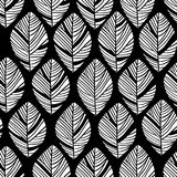 Floral linear seamless decorative pattern. Scribble background with leafs. Black and white contour fabric texture. Hand Stock Photo