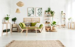 Floral living room with posters. Brown rug in spacious floral living room interior with plants on shelf and green sofa next to table against wall with posters Royalty Free Stock Photos