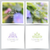 Floral logo set Royalty Free Stock Photography