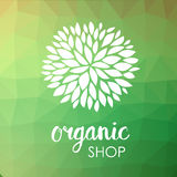 Floral logo. White flower on low poly green triangle pattern. Green life and organic ornamental concept. Stock Photos