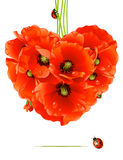 Floral love card (poppy heart) Stock Photo