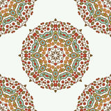 Floral mandala. Ethnic decorative elements. Hand-drawn background Royalty Free Stock Images