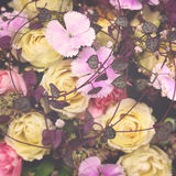 Floral matte background. Royalty Free Stock Photo