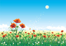 Floral meadow. On blue background royalty free illustration