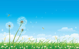 Floral meadow collection. With insects stock illustration