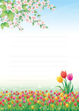 Floral meadow. Tulips. Floral meadow with tulips and tree vector illustration