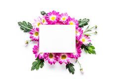 Floral mockup. Sheet of paper in frame of pink flowers on white background top view. Floral mockup. Sheet of paper in floral frame on white background top view Royalty Free Stock Photography