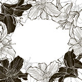 Floral monochrome frame with lilies. Flower background can be us Royalty Free Stock Image