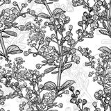 Floral monochrome ornament with branches Royalty Free Stock Images