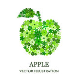 Floral mosaic green apple Stock Photo