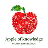 Floral mosaic red apple Stock Image