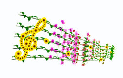 Floral music background Royalty Free Stock Photos