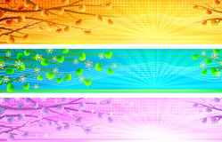 Floral natural morning banners royalty free illustration