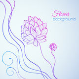 Floral nature background concept. illustration. Template for your design royalty free illustration