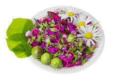 Floral nature diet concept Stock Photography