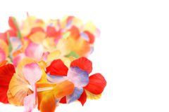 Floral Necklace Stock Images