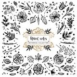 Floral notes botanical collection. Flowers, branches, and leaves Vector Illustration