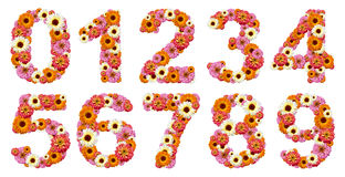 Floral numbers stock image