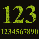Floral numbers made with leaves, natural numerals set, vector de Royalty Free Stock Images
