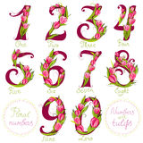 Floral numbers Royalty Free Stock Images