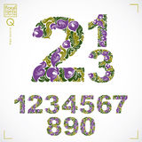 Floral numerals, hand-drawn vector numbers decorated with botani Stock Photo
