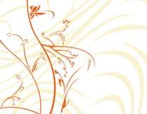 Floral orange avec le backg blanc Photo stock