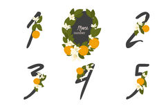 Floral  orange collection numbers in vintage color. One, two, three, four, five - signs Royalty Free Stock Photo