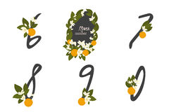 Floral orange  collection numbers in vintage color. Floral orange collection numbers in vintage color. Six, seven, eight, nine, zero- signs Royalty Free Stock Photography