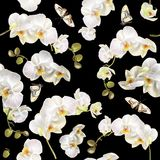 Floral orchid pattern Stock Images