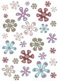 Floral orgánico Imagen de archivo