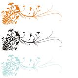 Floral Ornament. In three versions of color. Large format full resolution Stock Photos
