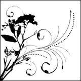 Floral ornament. Background- design vector illustration
