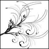 Floral ornament. Background- design royalty free illustration