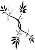Floral ornament. Background- design stock illustration