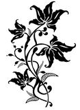 Floral ornament. An Elegant graphic Floral ornament Royalty Free Stock Image