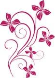 Floral ornament. Element for design vector illustration