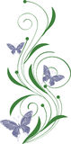 Floral ornament with butterflies. Green decorative scroll with butterflies vector illustration