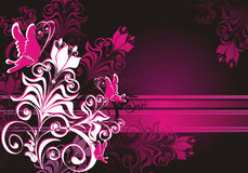 Floral ornament and butterfly. Vector illustration Stock Photos
