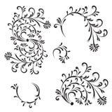 Floral ornament, design elements Stock Images