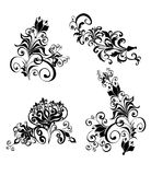 Floral ornament, Element for design, vector Royalty Free Stock Photo