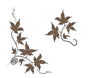 Floral ornament elements of leaves in hand drawn style Royalty Free Stock Photography