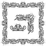 Floral ornament frame Stock Photography