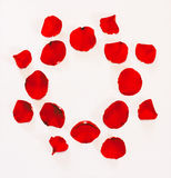 Floral ornament from petals of red roses on a white background. With space for text Royalty Free Stock Photo