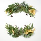 Floral ornament, round frame wreath from evergreen plants. stock photos