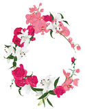 Floral ornament round vector frame Stock Photo